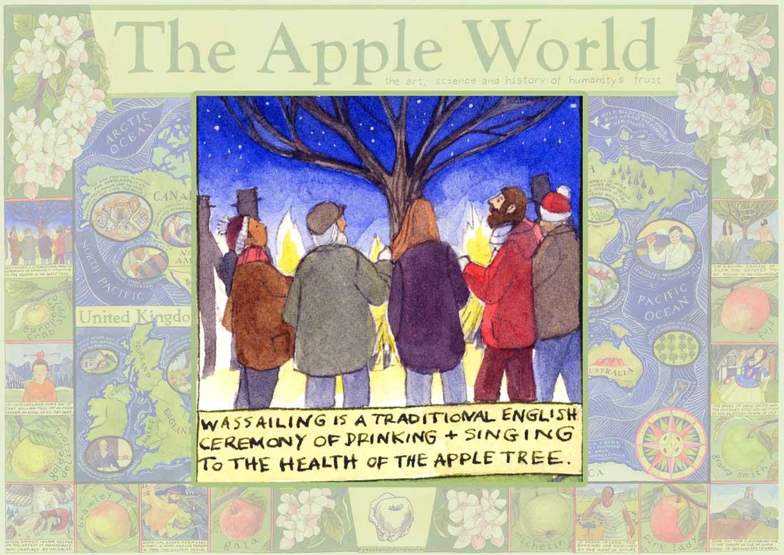 Apple World Map Wassailing