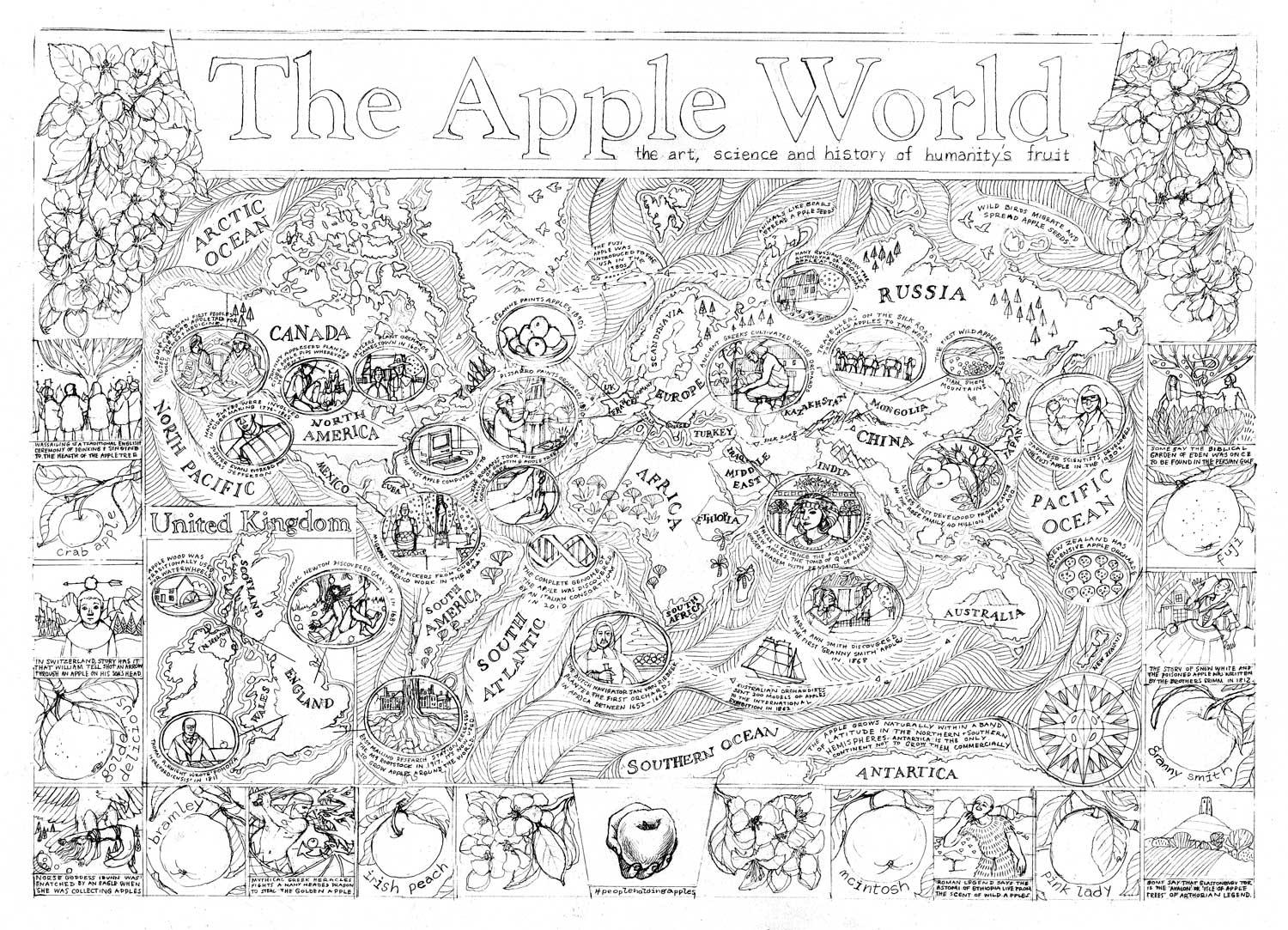 Apple World Map Rough Drawing