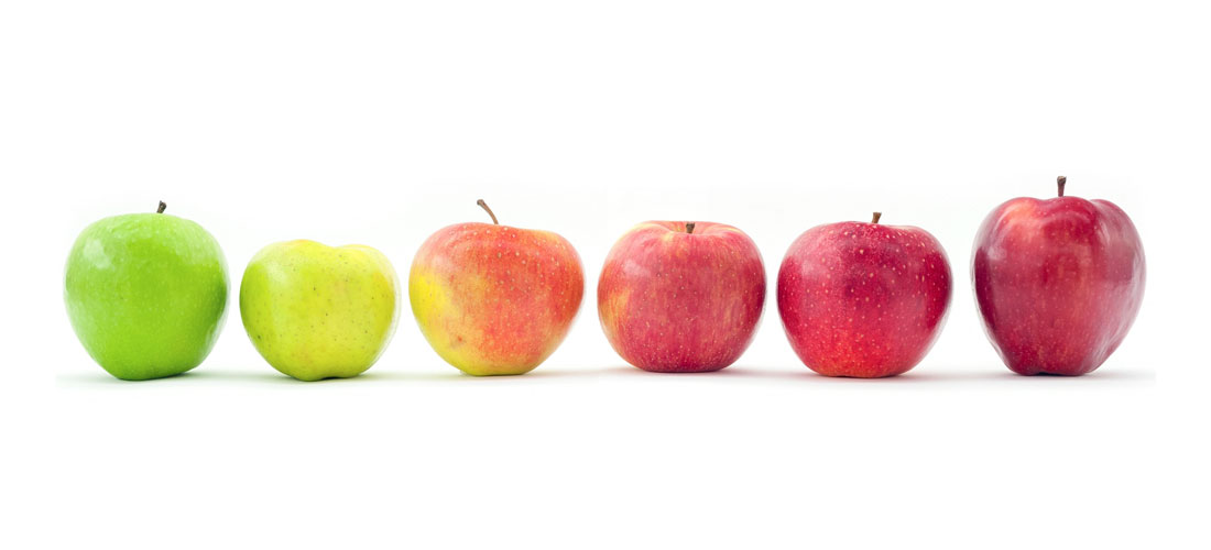 The effect of genotypes on apple skin colour © Nicola Busatto