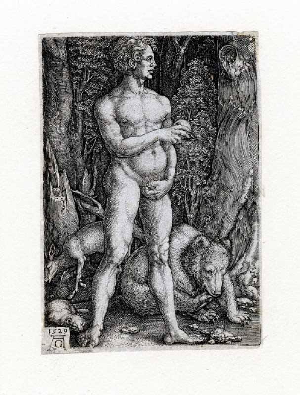 Heinrich Aldegrever - Adam with a Bear 1529 © Ashmolean Museum, University of Oxford