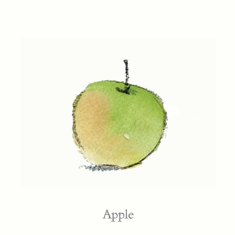 Illustration from Orange Pear Apple Bear copyright © Emily Gravett 2006