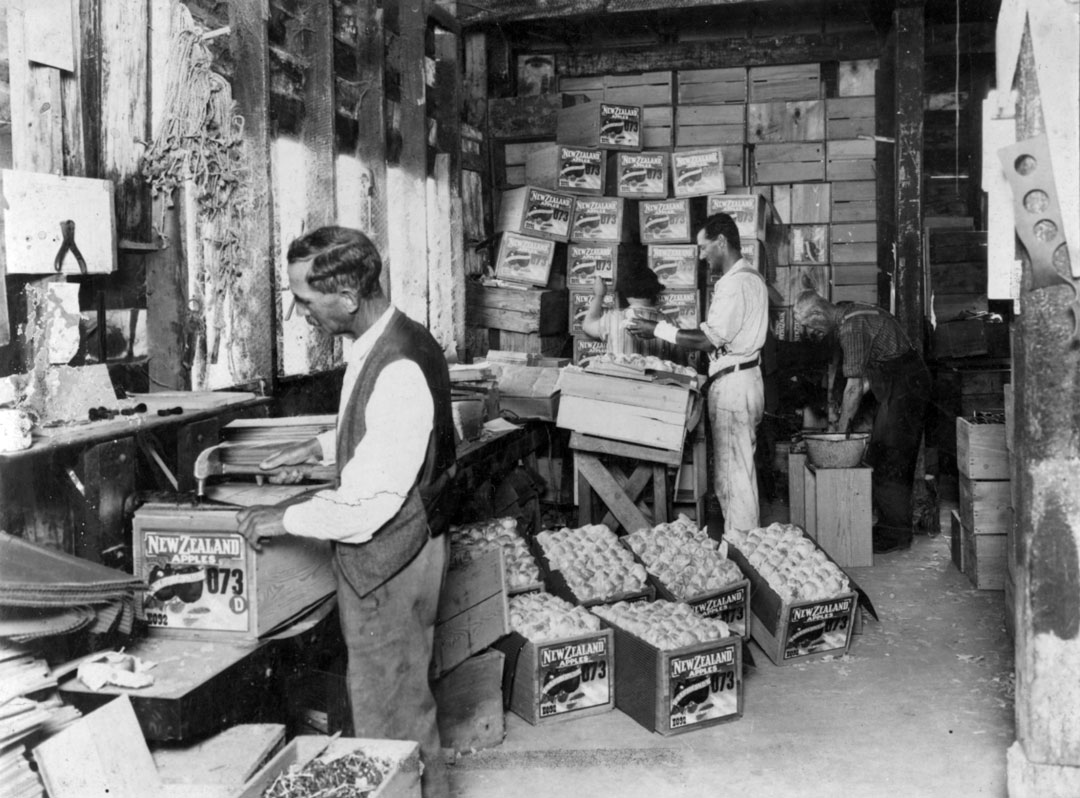 J.H. Kidd and staff packing apples 1930 © Wairarapa Archive