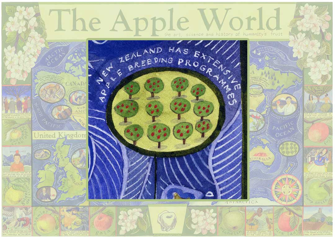 Apple World Map from Apples & People